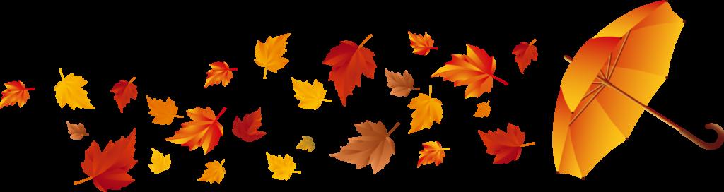 Картинки анимация осенние листья на прозрачном фоне, моя жизнь